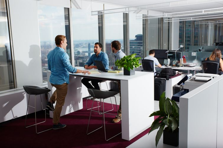 JLL's new office at 28 Liberty Street come with plants and breathtaking views of Lower Manhattan. Photo: Yvonne Albinowski/For Commercial Observer