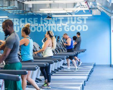 Inside a Blink Fitness gym. Photo: Blink Fitness