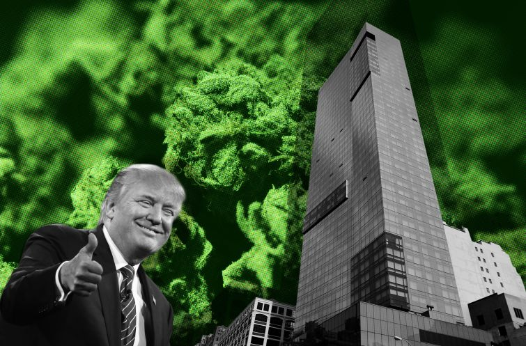 Trump Soho hosts a conference on the business of cannabis and real estate. Photo Illustration: Kaitlyn Flannagan/For Commercial Observer