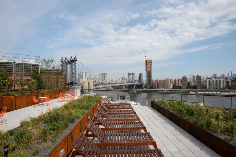 20 Jay Street's roof has been paved and there are plantings and seats.  Photo: Two Trees Management Company.