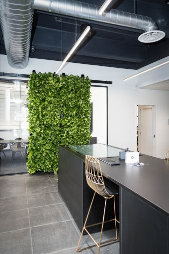 Barn-doors for the conference room is covered with plants.