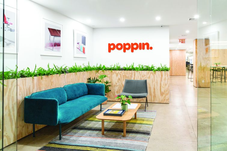 Poppin's new reception area has a tall, wooden plant stand and a teal couch.