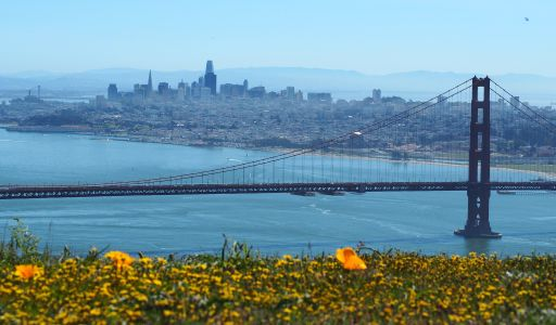 Policymakers in California's Bay Area announced this week that six San Francisco-area counties and the city of Berkeley will keep their shelter-in-place orders active through the end of May.