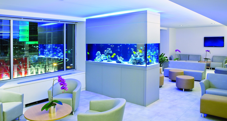 An aquarium built into the wall of a waiting room.