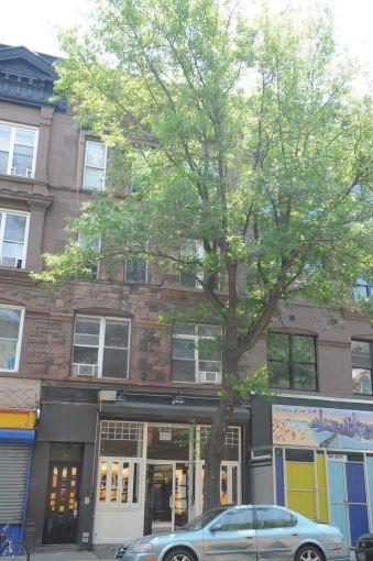 365 Fifth Avenue, Brooklyn.